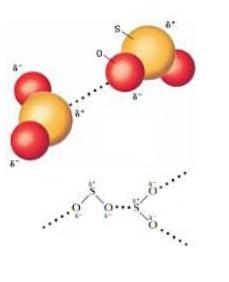 極性分子間
