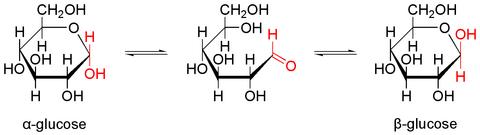 Glucose_equilibrium