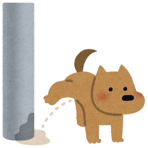 pet_dog_oshikko