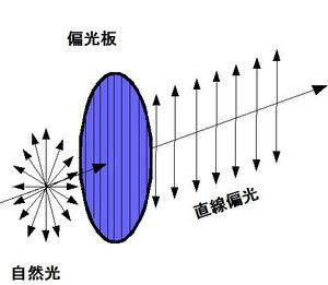 糖度の測定方法~旋光度~ : 毎日が日曜 晴耕雨読な日々