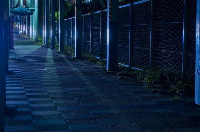NAT93_hikarinosasu_TP_V4