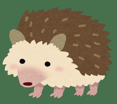 animal_harinezumi