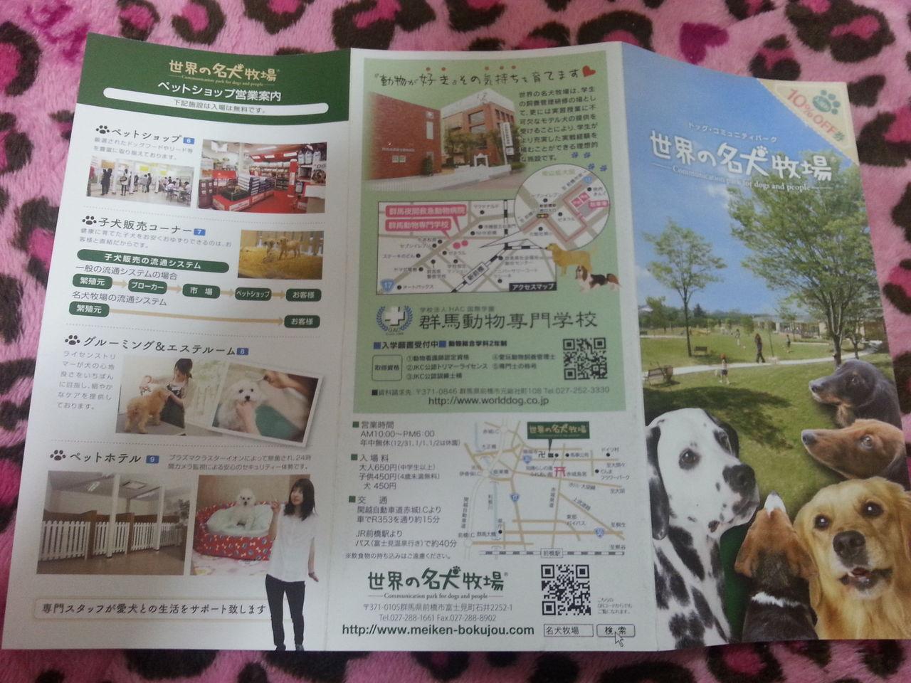 How about Gunma on GW (5)… Cheap B-Class spot-dog Zoo