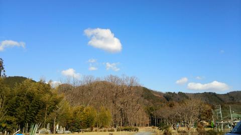 5 畑中風景 縮小