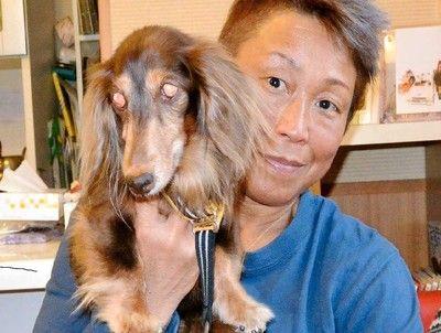 女子プロレスの「隠れた実力者」青野敬子さん犬と暮らせる介護老人施設開きたい