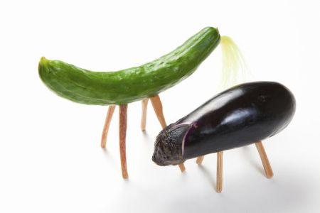 Image de discussion grossière de la nourriture pour chevaux Seishin liée au réglage de l'aubergine image-01
