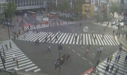 男性  渋谷 スクランブル交差点 巨大 エアーボール 移動 職務質問 職質 に関連した画像-01