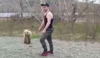 野生 クマ 小熊 背中に関連した画像-01
