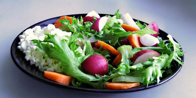 ヴィーガン 菜食主義 ベルギー 虐待に関連した画像-01