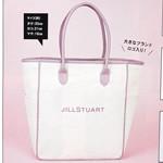 【速報】2018年12月号付録 JILL STUART(ジル スチュアート)、美容家 神崎 恵 監修 大人のふわっふわポーチ