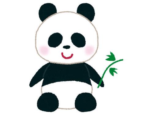 5匹のパンダ00