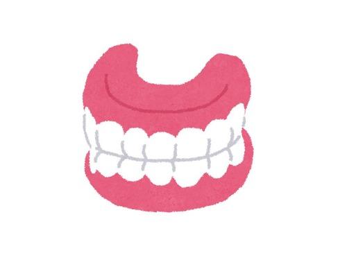 愛犬が入れ歯を拝借する