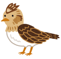 bird_hibari