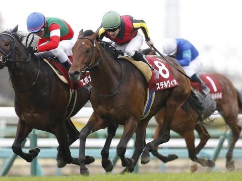 1 競馬 ステルヴィオ