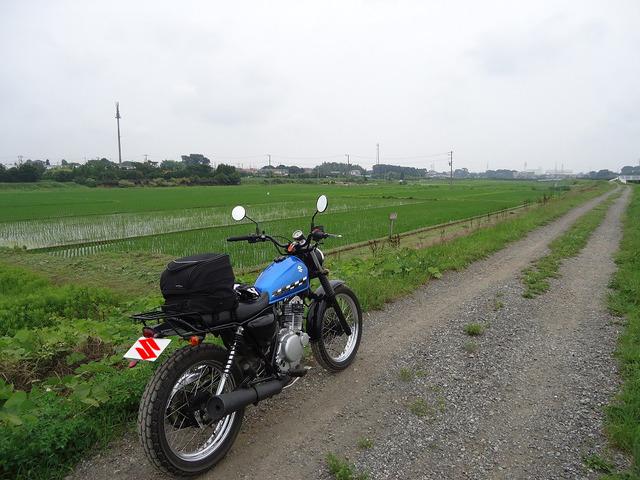 bike_1394117325_73101_m
