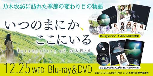 いつのまにか ここ に いる dvd