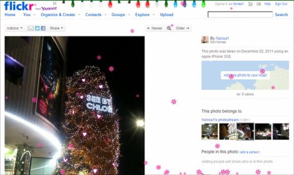 Flickrにも雪が降る03