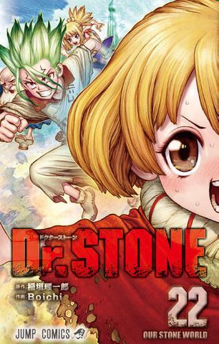 drstone022