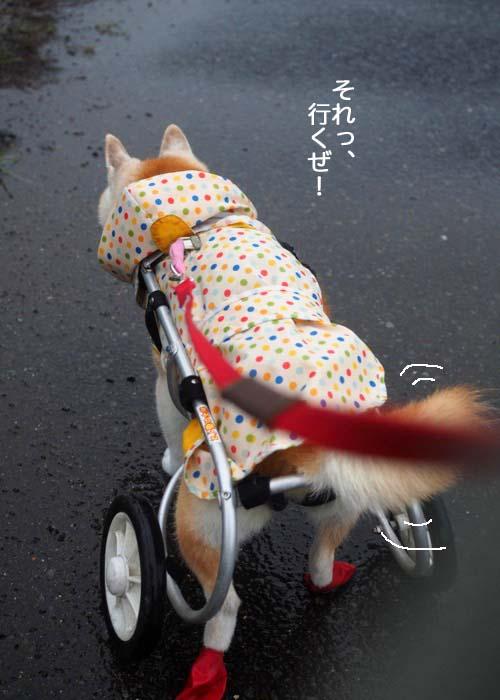 15日夕ブログ2