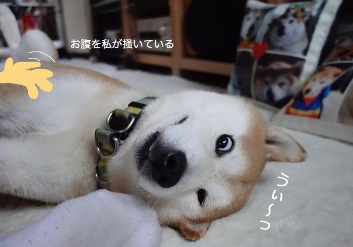22日朝ブログ5