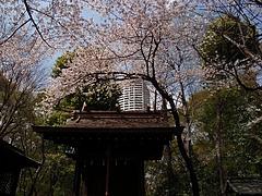 新宿熊野神社
