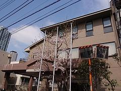 新宿養護学校