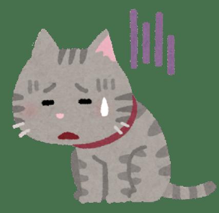 pet_cat_thirsty