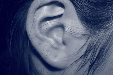 ear-207405_1920