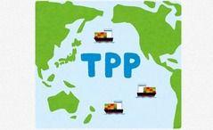 TPP承認案可決 国民民主「十分な審議がなされていない」