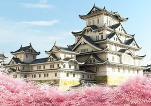 s_998660CHATEAUHIMEJI