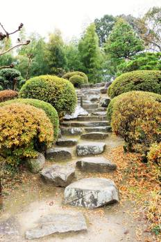 Steps to Geiki Peak