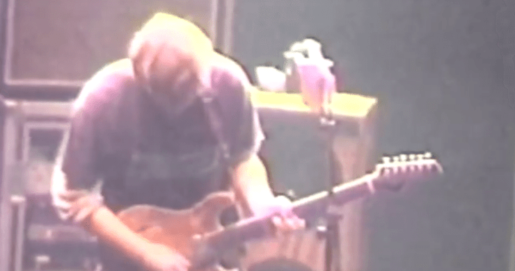 phish, 1997, europe, debut, walfredo, rock a william, love me, when the circus comes, my soul