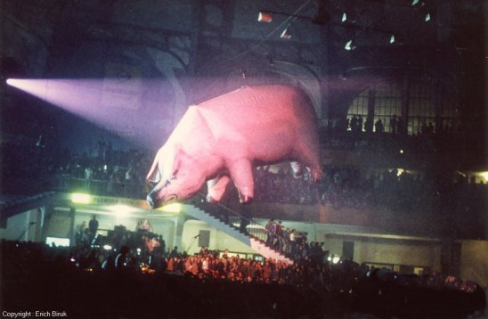 Pink Floyd's Inflatable Pig Broke Loose And Terrorized