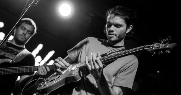 Goose Guitarist