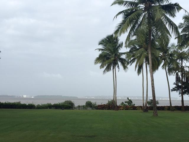 GH_5_Lawns plus Bay