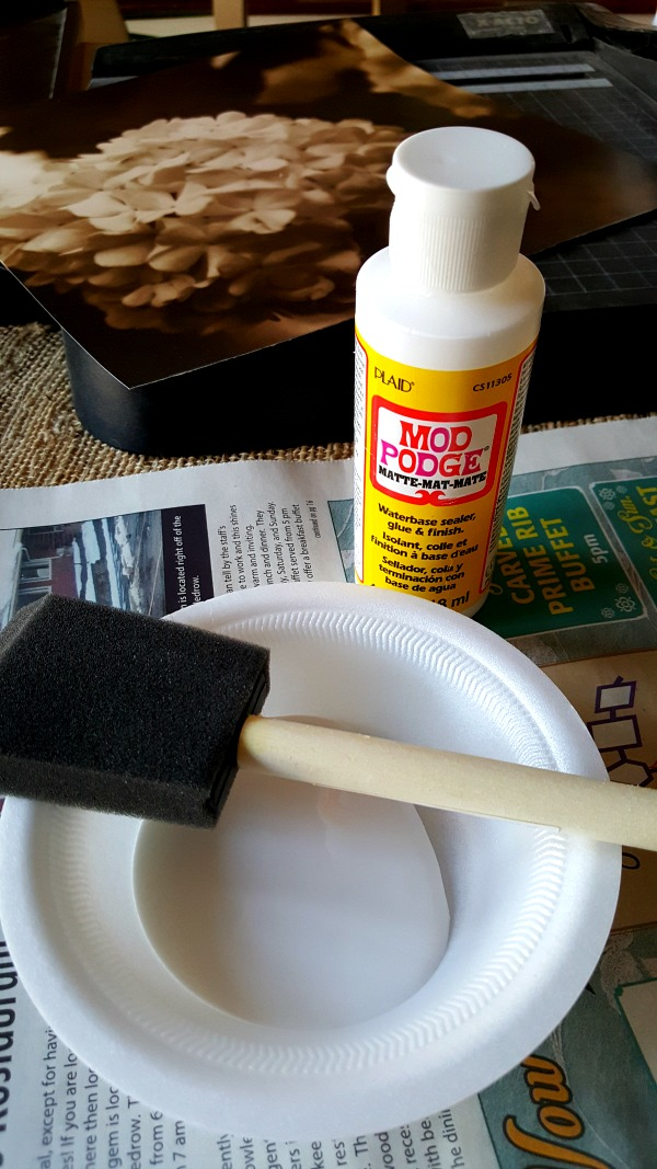 ModPodge and foam brush