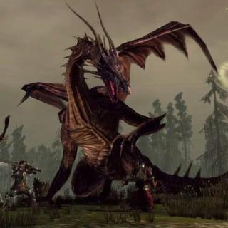 Dragon Age Origins сражение с драконом