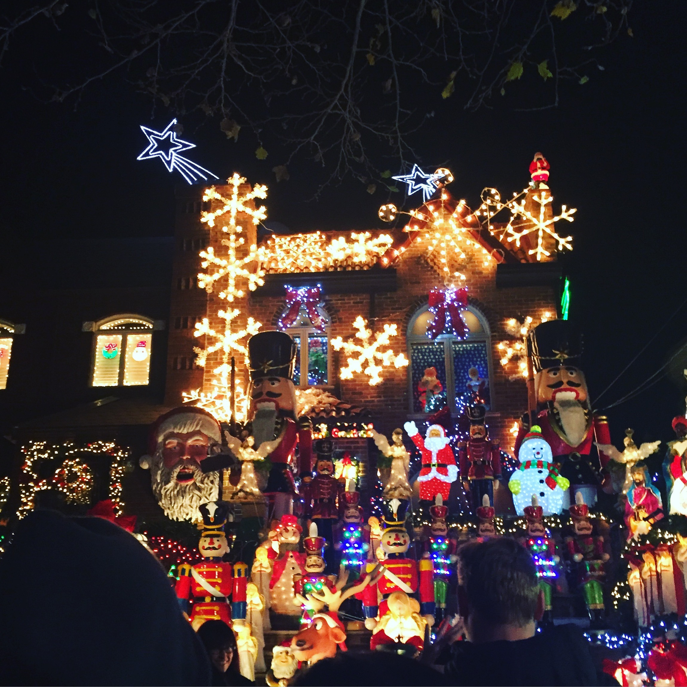 The Real Life Whoville: Dyker Heights