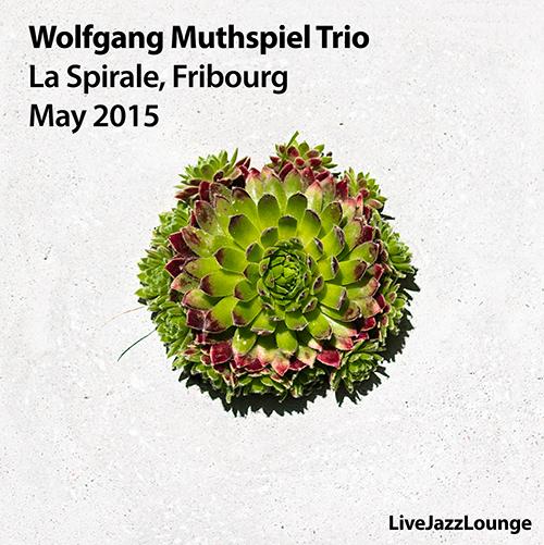 WolfgangMuthspielTrio_2015