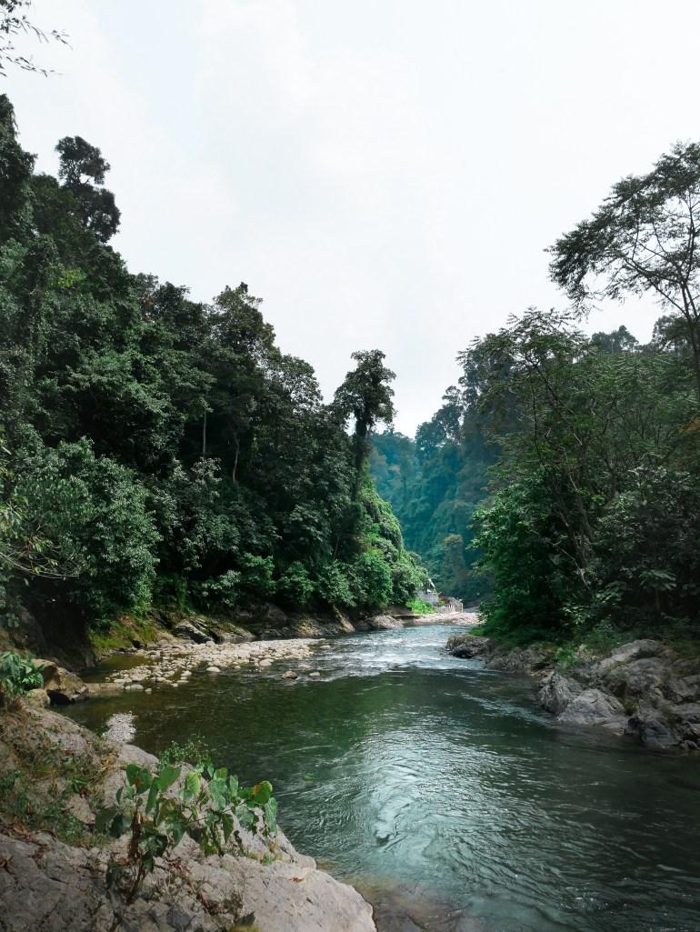 Bukit Lawang River
