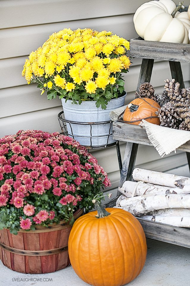 Fall Front Porch Decor to inspire you! Colorful Pumpkins, Corn Husks and a lovely sitting area. livelaughrowe.com