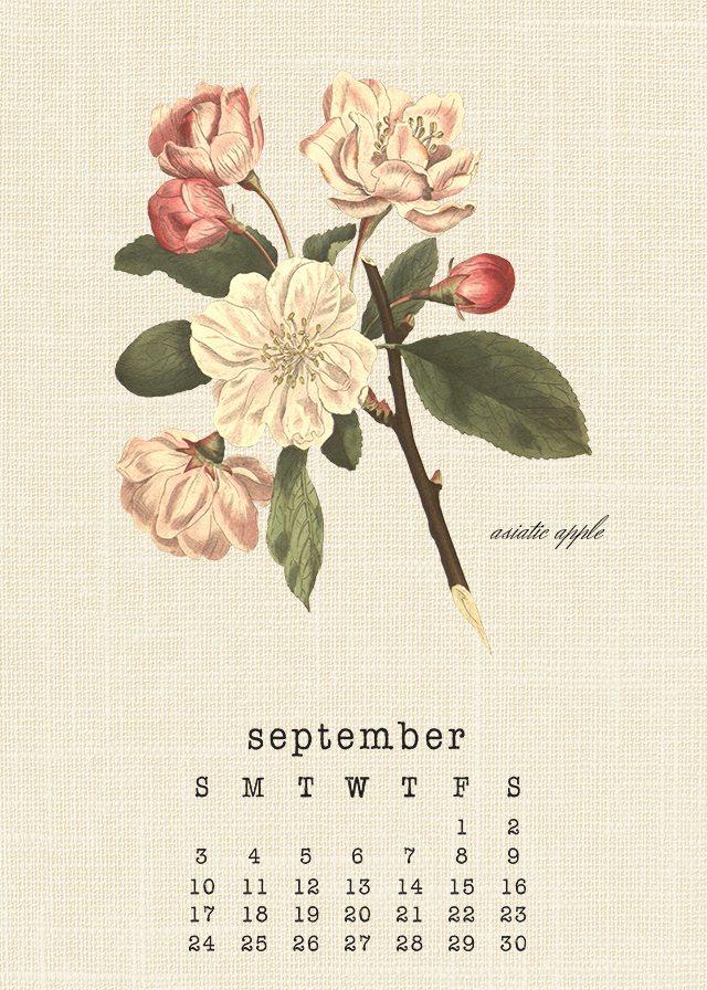 Lovely Botanical September 2017 Calendar. Print yours at livelaughrowe.com