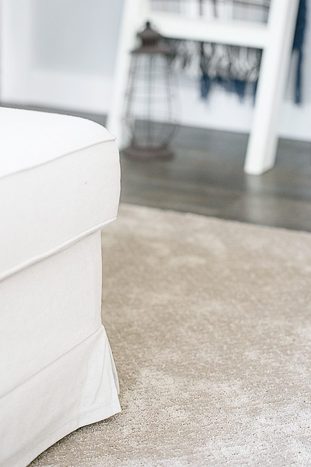 AWESOME Pet Friendly Carpet!! No moisture absorption with a spill and spoil shield for quick cleanup. Learn more at livelaughrowe.com