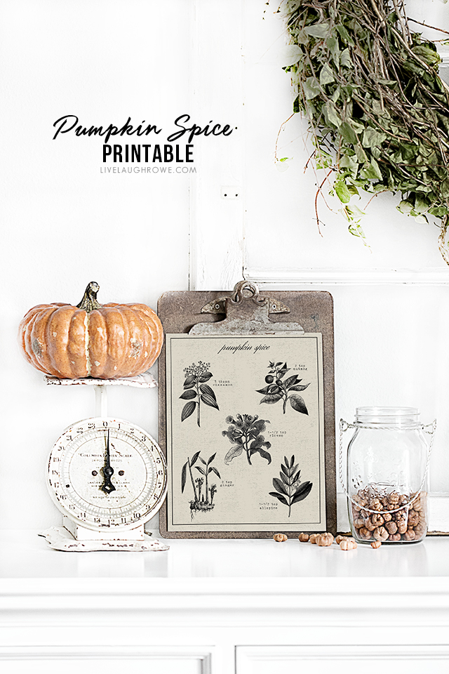 Beautiful vintage inspired Pumpkin Spice Printable -- with the recipe for pumpkin spice on it! This would make a great gift framed or with a bottle of pumpkin spice! livelaughrowe.com