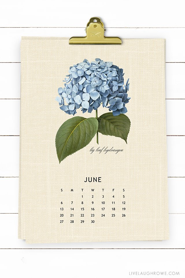 Vintage Botanical Printable 2021 Calendar