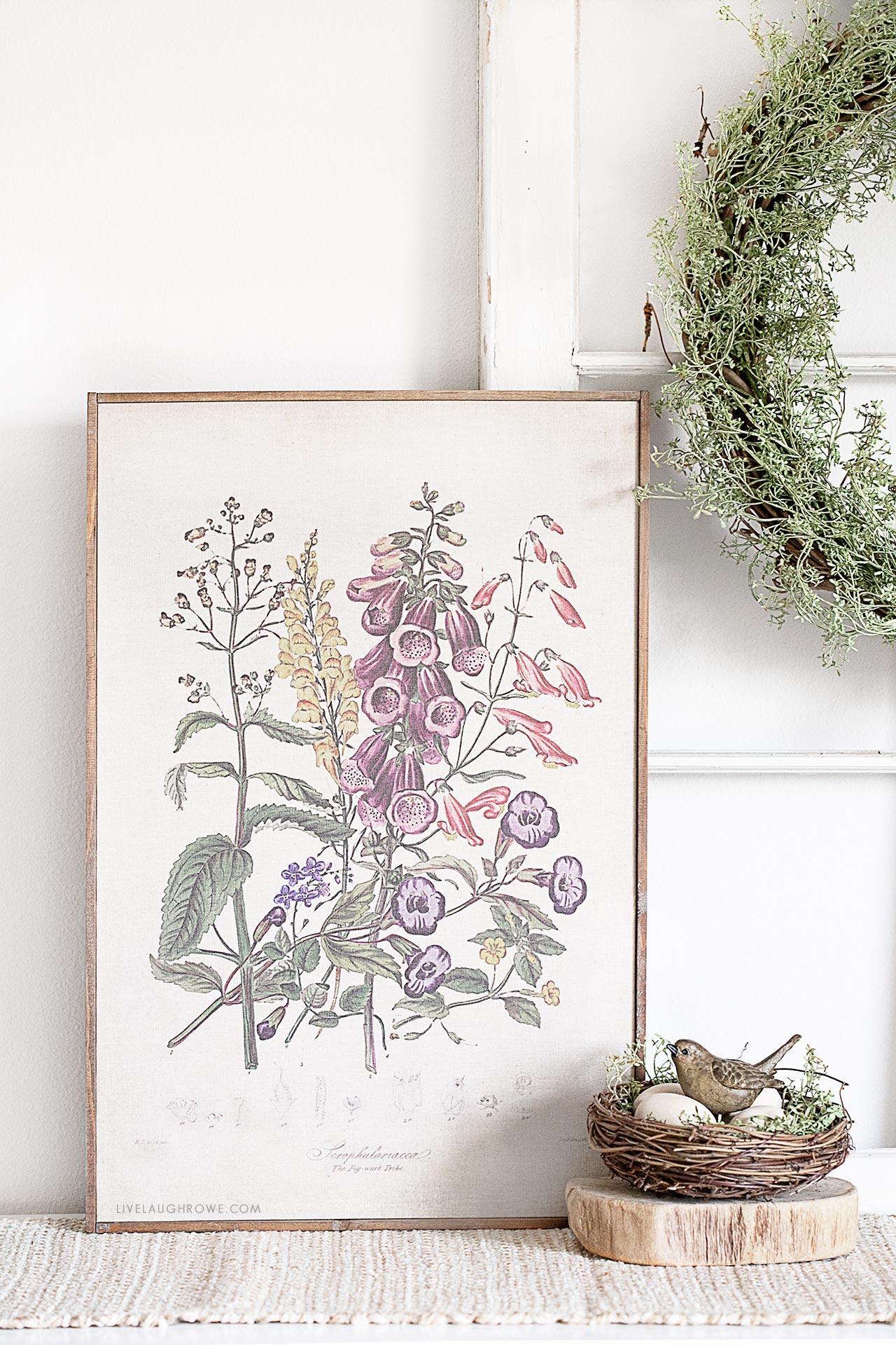 Botanical Print in Spring Vignette