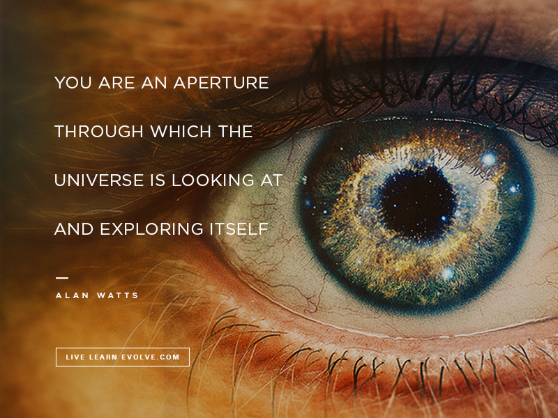 Alan_Watts_Eye_Universe
