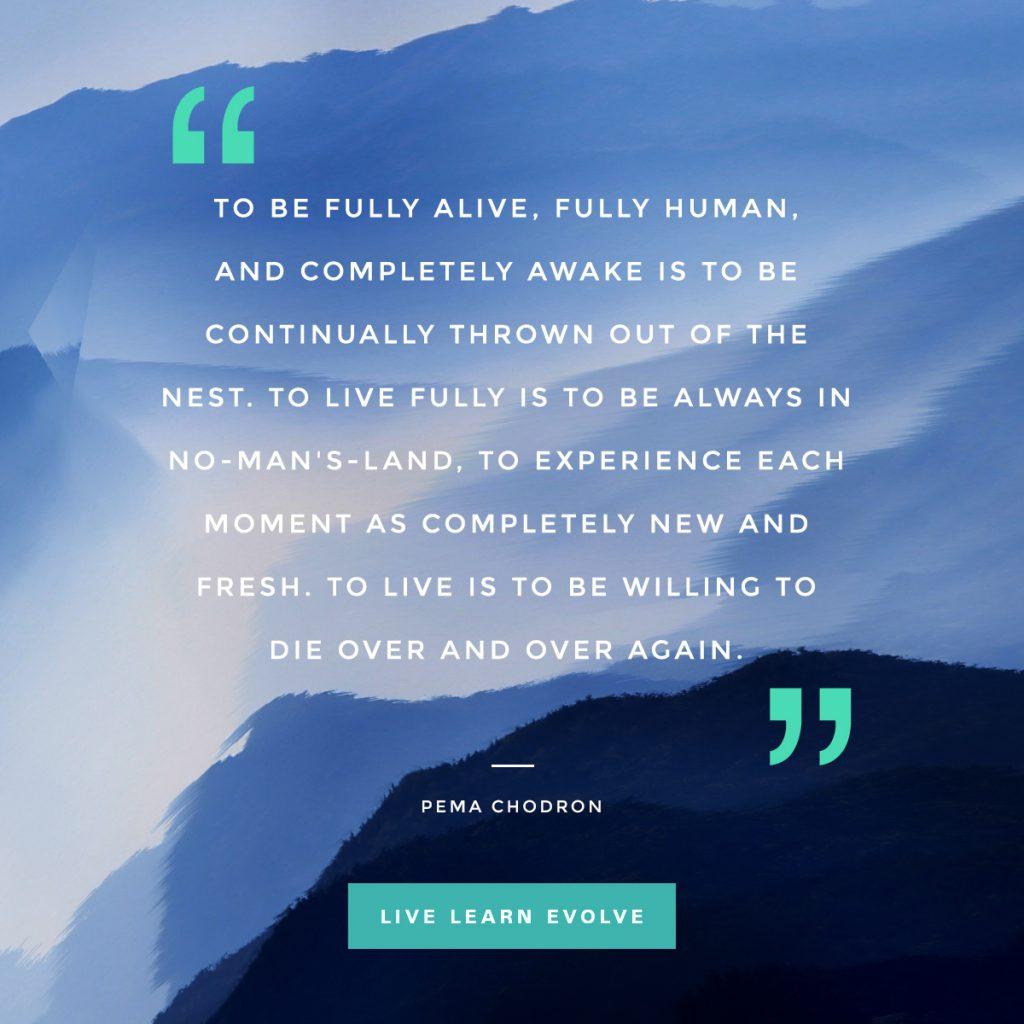 pema_chodron_alive_awake_die_nest_experience