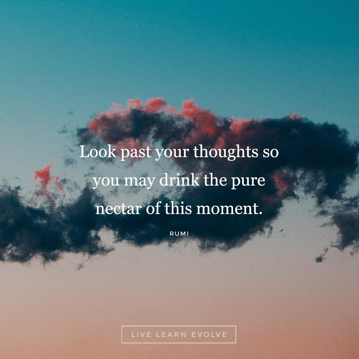 zen_quotes_rumi_proverbs