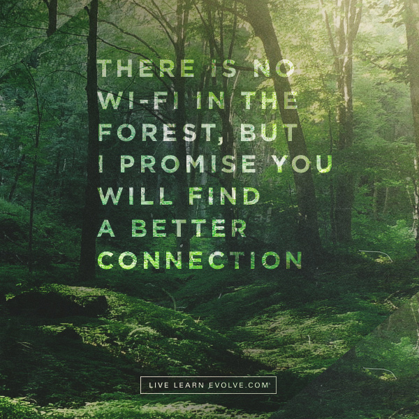 wifi-forests-better-connection-v3
